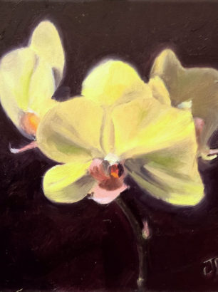 orchid oil painting alla prima life study